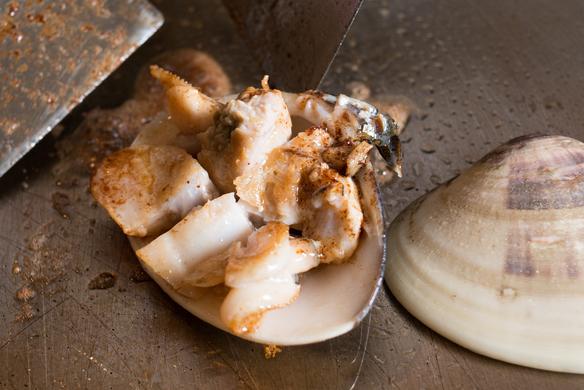 活蛤 ハマグリ 鉄板焼