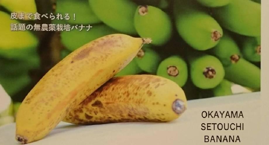 瀬戸内バナナ(500円〜)