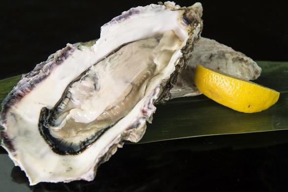 シェフ厳選 産地直送 活岩牡蠣 活殻付生牡蠣の冷たいオードヴル