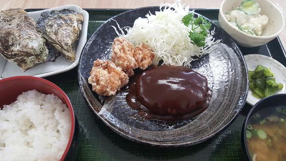 ハンバーグ&唐揚げ定食