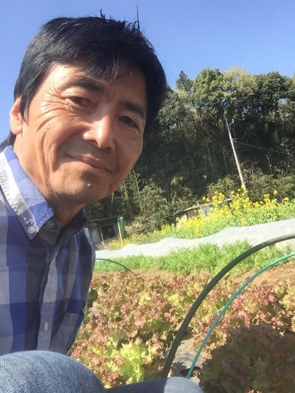 やまちゃんの野菜 湘南藤沢で農薬や化学肥料は一切使わず野菜本来の美味しさを追求し、露地栽培で安心安全な旬の野菜をお届けします。