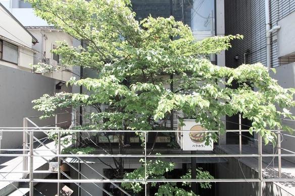 青山OGビル 地下1階です。