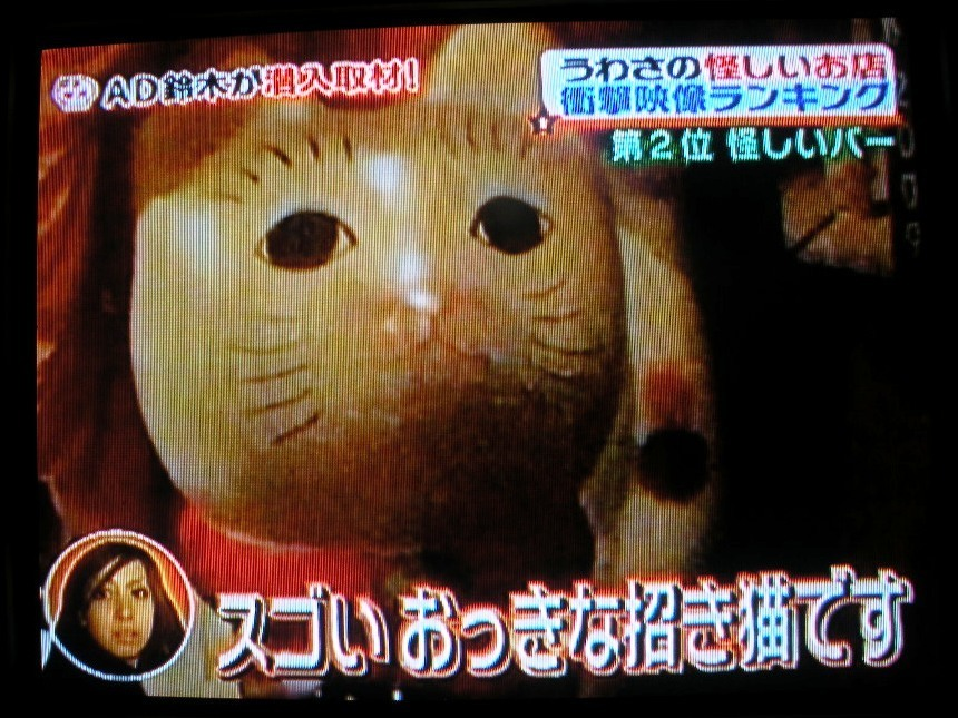 Tv oneg036