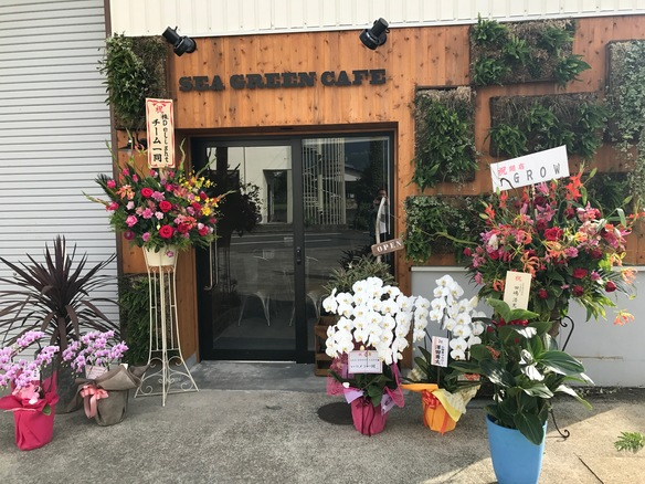 開店祝いの花&観葉 みなさんありがとうございました(^_^)