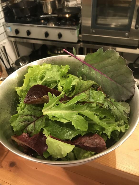 自家製野菜(*≧∀≦*)
