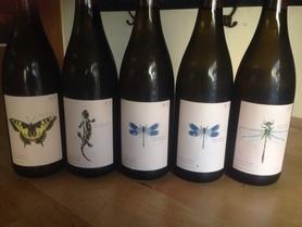 オーストリアのアンドレアス ツェッペのワイン。