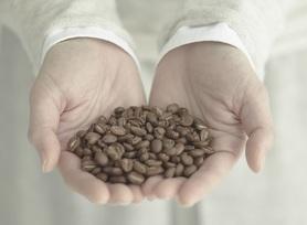 310.コーヒーで使用する豆は、店内工房(焙煎機)にて、その日にお出しする豆を職人が朝から焼いています。