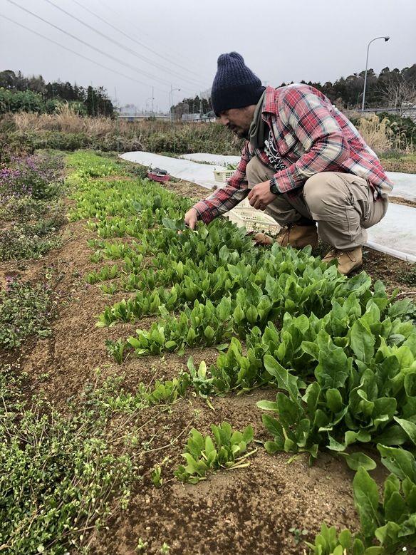 契約農家、えんちゃん農場の長岡さん。
