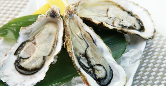 プリプリで旨味たっぷりの生食牡蠣も楽しめる!贅沢コースは自社輸入のワインと共に 西新宿『リストランテワイン屋』