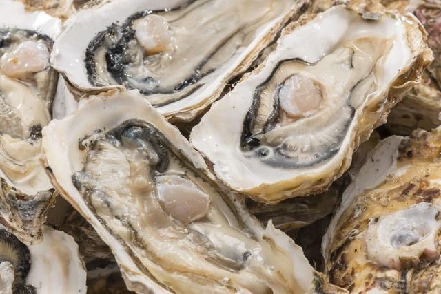全国から旬の牡蠣が勢揃い!恵比寿で牡蠣といったらこの5軒!有名オイスターバーも