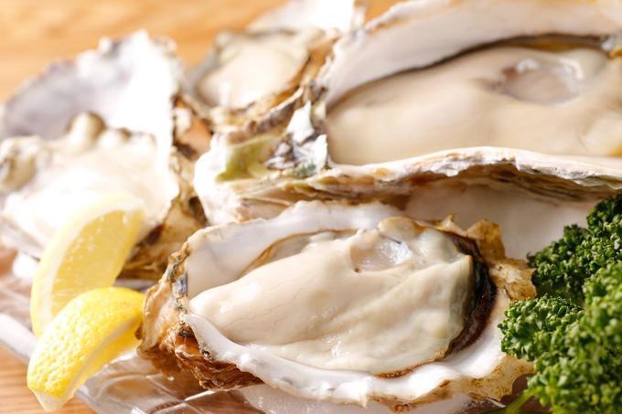【新宿】厳選を重ねた上質で大粒な「安芸津牡蠣」尽くしの料理を堪能!『OYSTERS,INC.』