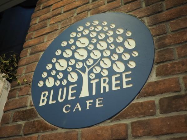 """ハワイの人気店『BLUE TREE』が渋谷に上陸!身体の中から綺麗になれる""""ビーガン料理""""の魔法に注目!"""