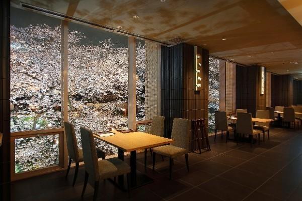 極上の贅沢!窓一面に咲き乱れる桜も!庭園の見える席で味わう至極の日本料理『なだ万』