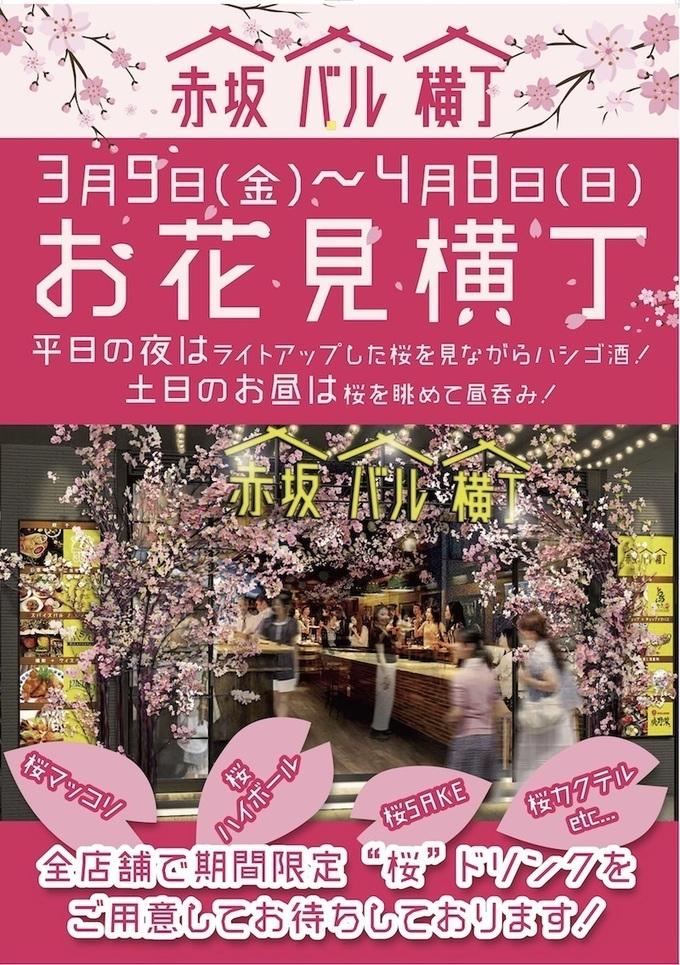 【赤坂】この春は横丁でも桜が観れる⁉︎個性溢れるお店が集う『赤坂バル横丁』で夜桜見物!
