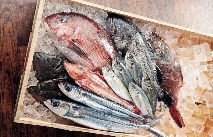 【坂ノ市】チェーン店の仕入れ力ならでは!その日一番新鮮な魚介を食べられる『目利きの銀次』