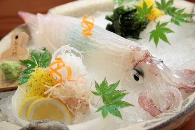【銀座】魚好きも認めた味⁉︎毎朝届く呼子のイカが姿造りで味わえる!『櫓庵治 銀座店』