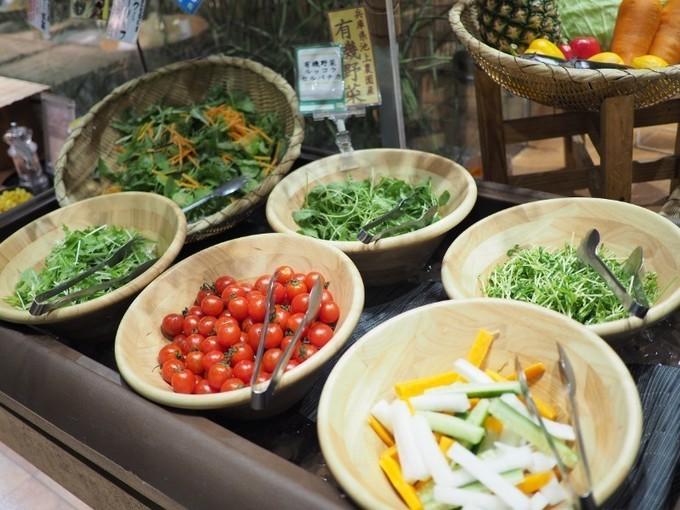【加古川】自然食の時間無制限食べ放題!秋の新メニューは音と食感を楽しむ『ひな野』