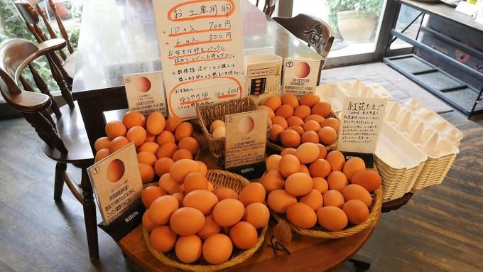 たまごソムリエが100種から8種を厳選!都内の「卵かけごはん」のお店を食べ比べ