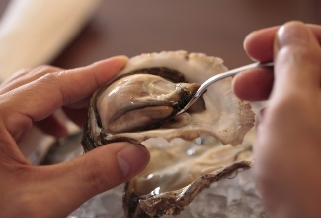 【現在終了】「オストレア」で国内産牡蠣が半額!4月まで必ずどこかの店舗でキャンペーン実施中
